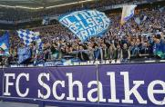 Schalke-Fans, Schalke-Fans