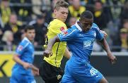 BVB II: Neuzugang aus Hoffenheim