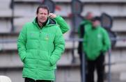 Trainer, Sven Demandt, Regionalliga West, Borussia Mönchengladbach II, Saison 2013/14, Trainer, Sven Demandt, Regionalliga West, Borussia Mönchengladbach II, Saison 2013/14