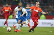 VfL Bochum, Saison 2014/15, Nicolas Abdat, VfL Bochum, Saison 2014/15, Nicolas Abdat