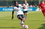 Schalke 04 U19, Saison 2014/2015, Joseph Boyamba, Schalke 04 U19, Saison 2014/2015, Joseph Boyamba