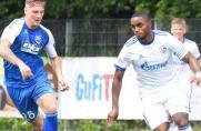 OL W: Cinel verabschiedet sich von Schalkes U23 mit Remis