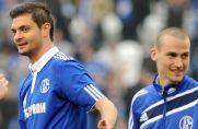 """Beim FC Schalke 04 ging Angelos Charisteas im Jahr 2011 für sechs Monate auf """"Torejagd""""."""