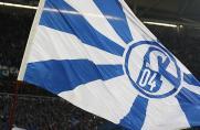 Schalke: Neu im Wahlausschuss: Das sagt Torsten Wieland