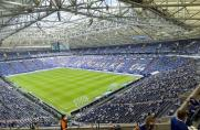 Schalke, fc schalke 04, 2. Bundesliga, S04, Schalke, fc schalke 04, 2. Bundesliga, S04