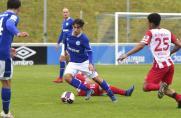 Schalke 04, Jason Ceka, Schalke 04, Jason Ceka
