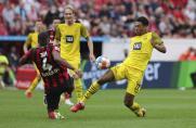 Tor-Spektakel: Haaland rettet BVB an Roses Geburtstag