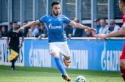 RL West: Uerdingen verpflichtet noch einen neuen Spieler