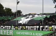 Regionalliga West: Preußen Münster führt 2G-Regelung im Stadion ein