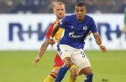 Schalke-Topwert: In dieser Statistik ist S04 vorne