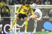 BVB, Borussia Dortmund, Donyell malen, BVB, Borussia Dortmund, Donyell malen