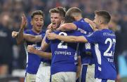 """""""Der S04 ist wieder da"""": 3:0-Sieg gegen Dynamo Dresden"""