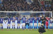 Schalke: Grammozis lobt seine Mannschaft