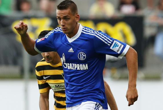 reviersport schalke 04