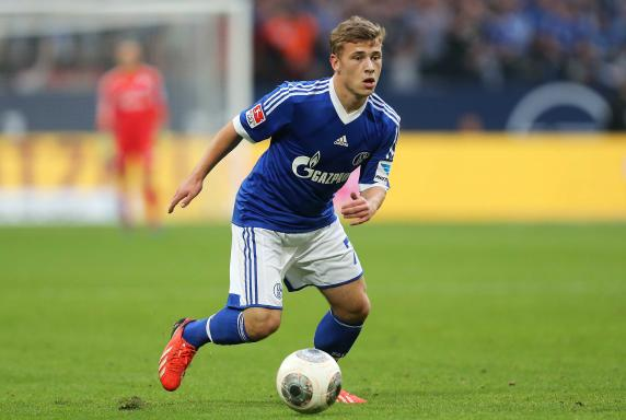 schalke 04 reviersport