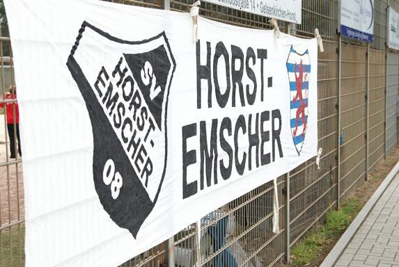 SV Horst-Emscher 08, Saison 2013/14, SV Horst-Emscher 08, Saison 2013/14