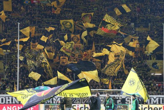 BVB Fans, BVB Fans