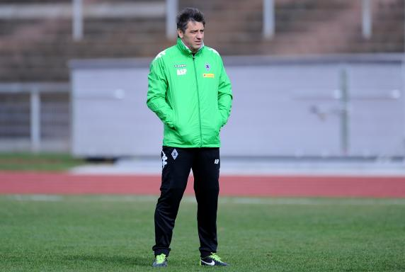 Trainer, Regionalliga West, Borussia Mönchengladbach II, Adrian Spyrka, Saison 2013/14, Trainer, Regionalliga West, Borussia Mönchengladbach II, Adrian Spyrka, Saison 2013/14