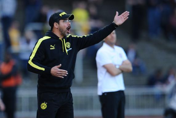 Trainer, Borussia Dortmund II, 3. Liga, David Wagner, Saison 2013/14, Trainer, Borussia Dortmund II, 3. Liga, David Wagner, Saison 2013/14