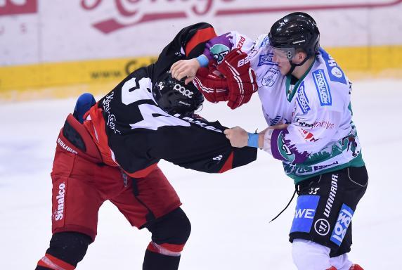 Eishockey, Moskitos Essen, EV Duisburg, Saison 2014 / 2015, Eishockey, Moskitos Essen, EV Duisburg, Saison 2014 / 2015