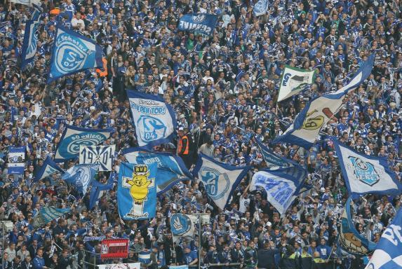 Schalke, Fans, S04, Arena.