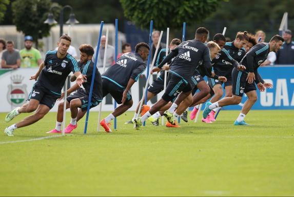 Schalke, Training.