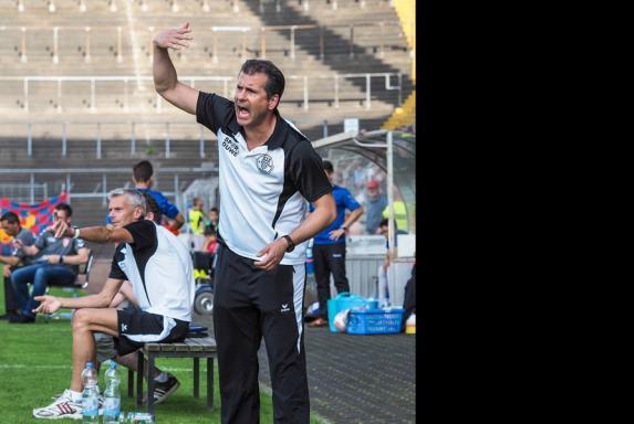 ETB Schwarz-Weiß Essen, SW Essen, Antonio Molina, Saison 2014/15, ETB Schwarz-Weiß Essen, SW Essen, Antonio Molina, Saison 2014/15