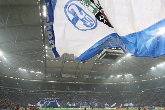 Veltins-Arena, Choreo, fc schalke 04, Schalke_Fans, Fahnenschwenker, Veltins-Arena, Choreo, fc schalke 04, Schalke_Fans, Fahnenschwenker