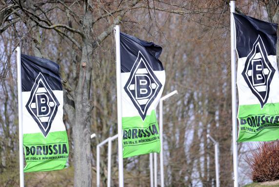 fahnen, Regionalliga West, Borussia Mönchengladbach II, Saison 2013/14, fahnen, Regionalliga West, Borussia Mönchengladbach II, Saison 2013/14
