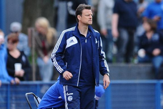 Trainer, Schalke 04, Christian Wörns, B-Junioren, Saison 2013/14, Trainer, Schalke 04, Christian Wörns, B-Junioren, Saison 2013/14