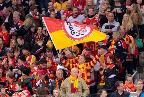 Düsseldorfer EG, Saison 2014 / 2015, Düsseldorfer EG, Saison 2014 / 2015
