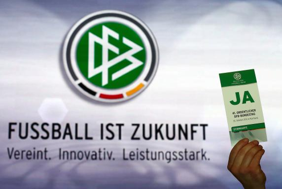 DFB, Reformen, Bundestag, DFB, Reformen, Bundestag