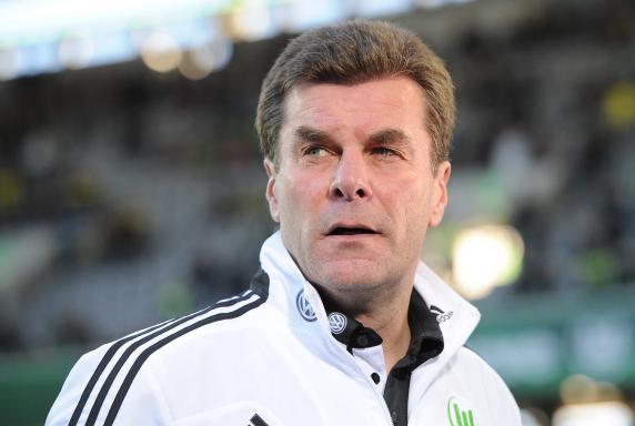 VfL Wolfsburg, Dieter Hecking, Saison 2013/2014, VfL Wolfsburg, Dieter Hecking, Saison 2013/2014