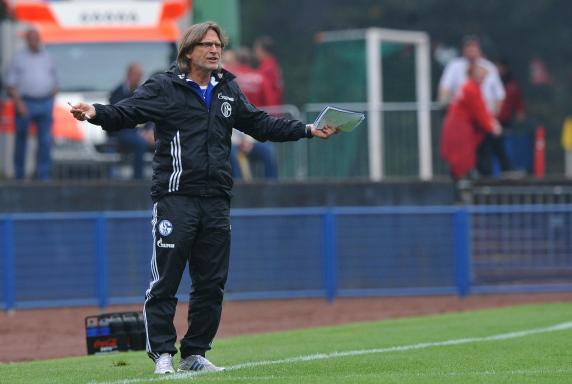 Trainer, Norbert Elgert, Schalke 04, A-Junioren Bundesliga, Saison 2013/14, Trainer, Norbert Elgert, Schalke 04, A-Junioren Bundesliga, Saison 2013/14