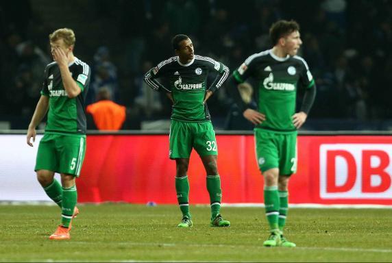 FC Schalke 04 Hertha BSC Berlin
