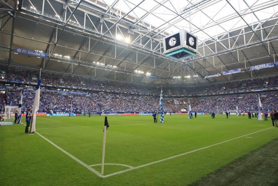 Rasen, Arena, Schalke-Fans, Eckfahne, Kreide, Rasen, Arena, Schalke-Fans, Eckfahne, Kreide