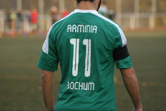 DJK Arminia Bochum, Saison 2013/14, DJK Arminia Bochum, Saison 2013/14