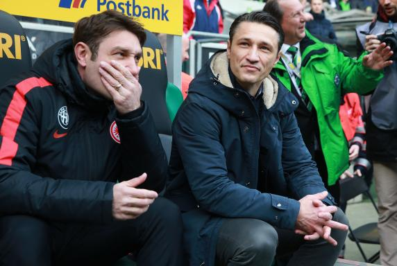 Eintracht Frankfurt, 1. Bundesliga, Nico Kovac, Saison 2015/16, Eintracht Frankfurt, 1. Bundesliga, Nico Kovac, Saison 2015/16