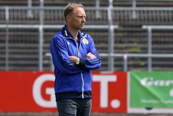 FC Schalke 04 II, Jürgen Luginger, Regionalliga West, Saison 2014/2015, S04 II, FC Schalke 04 II, Jürgen Luginger, Regionalliga West, Saison 2014/2015, S04 II