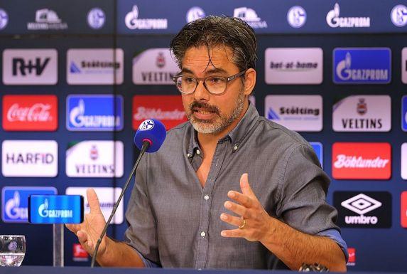 Trainer David Wagner verteidigt den Sparkurs von Schalke 0 (