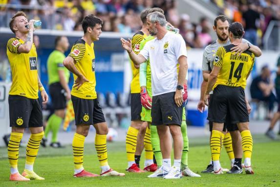 BVB, Borussia Dortmund, Rose, BVB, Borussia Dortmund, Rose