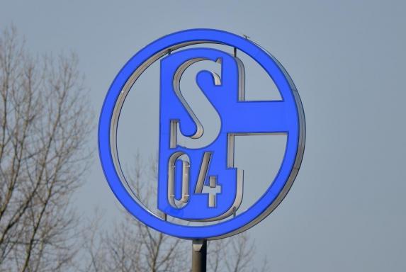 Schalke 04: Pascal Krusch komplettiert den Aufsichtsrat