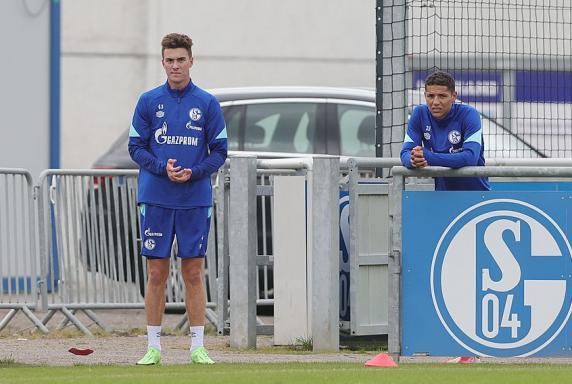 Schalke: So ist der Stand bei Harit und Hoppe
