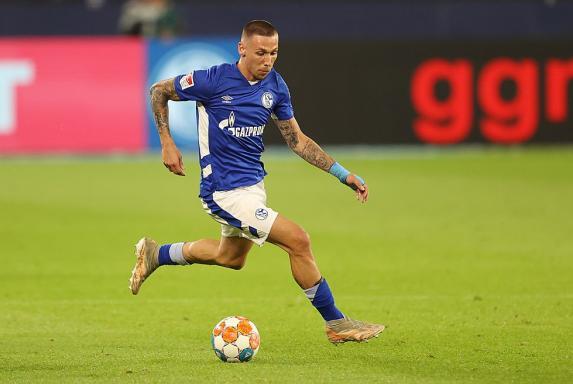 """Schalke-Trainer über Stürmer: """"Darko ist keiner, der rumheult..."""""""