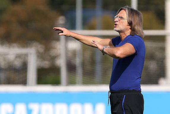 """""""Brillant gekontert"""": Schalke-U19 schießt 1. FC Köln ab"""