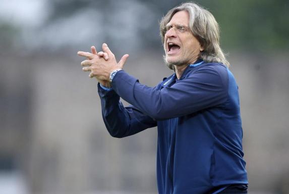 Norbert Elgert, Schalke 04, Norbert Elgert, Schalke 04