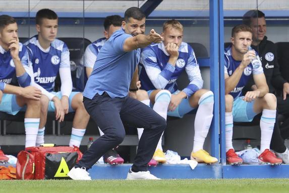 Schalke 04, Dimitrios Grammozis, Schalke 04, Dimitrios Grammozis