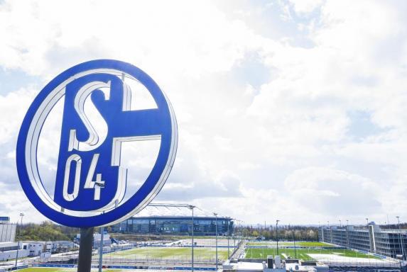 Schalke, S04, Schalke, S04