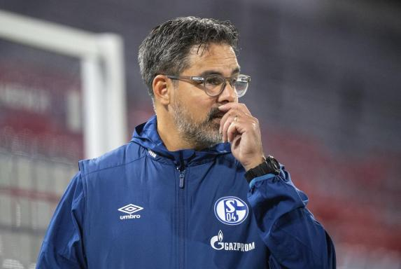 Schalke 04, david eagner, Schalke 04, david eagner