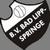 BV Bad Lippspringe Logo